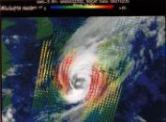 ADEOS 台風風速画像