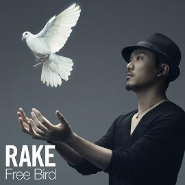 FreeBird通常盤