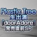Plastic Tree メンバー全員生出演