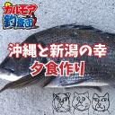 【限定】沖縄と新潟で釣った(貰った)魚で夕飯作り!