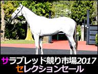 【競走馬セリ】セレクションセール 2017