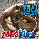 【カルモア釣査団】決戦ダイナンウミヘビ