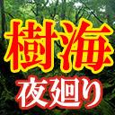 【樹海】村田らむと夜の樹海行かナイト