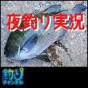 【カルモア釣査団】夜の岸壁フカセ釣り 1人配信