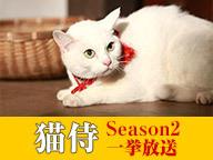 猫侍 Season2 一挙放送