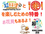 【超会議×ニコめし】 超料理と超フードコートを楽しむための特番!お花見もあるよ!