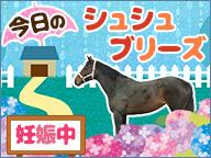 【馬】今日のシュシュブリーズ