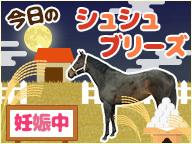 【馬房定点】今日のシュシュブリーズ 9月26日