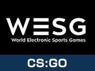 eSports世界大会WESG「CS:GO」