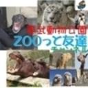 ふれあい動物パレードを見に行きましょう!! 東武動物公園