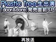 Plastic Treeメンバー出演特番