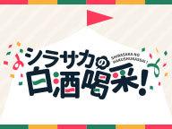 『【ゲスト西山宏太朗】シラサカの白酒喝采!第50回記念 公式生放送!』のサムネイルの背景