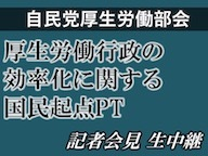 【自民党】厚生労働部会 記者会見