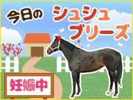 【馬】今日のシュシュブリーズと娘