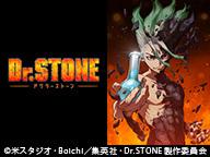 「Dr.STONE」7話上映会