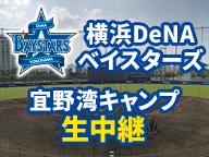 横浜DeNAベイスターズ宜野湾キャンプ生中継
