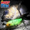 東京湾、夜のボートでメバル釣り!
