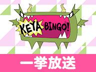 全力! 欅坂46バラエティー『KEYABINGO!』一挙放送