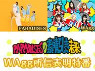 PARADISESの素晴らしき未来 WAgg所信表明特番