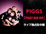 PIGGS 「PIGGY BAD HIP」ライブ独占生中継